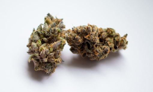 Buy Granddaddy Purple Kush Online